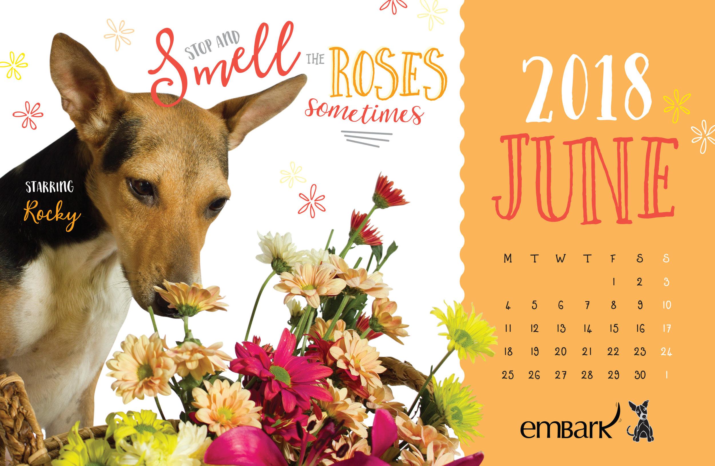Embark-Calendar-2018-13.jpg