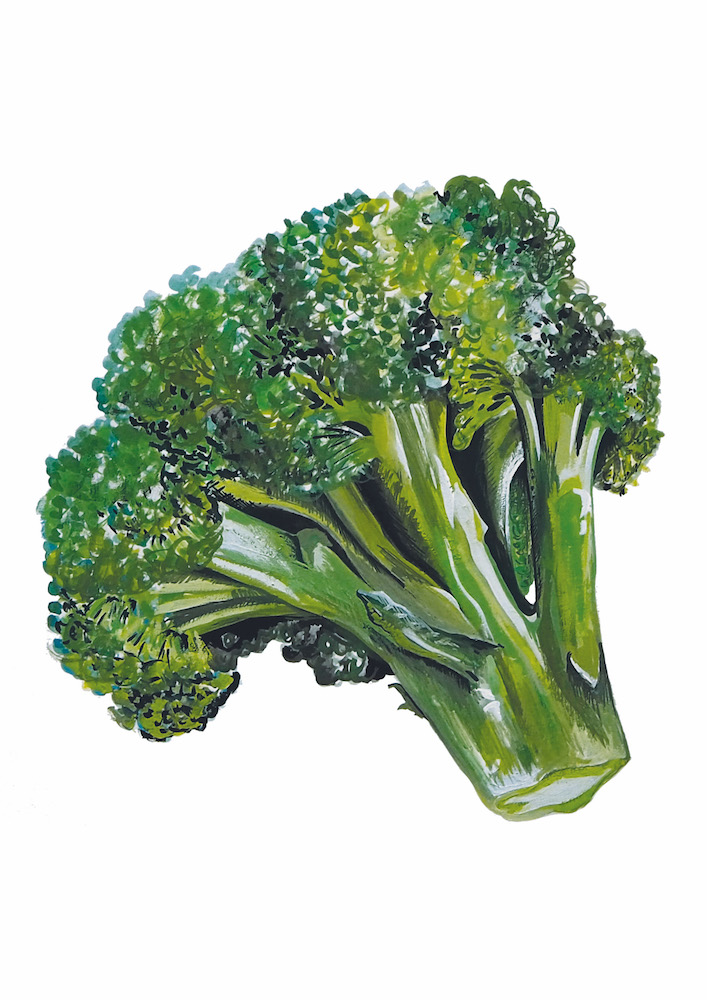 Broccoli 1000.jpeg