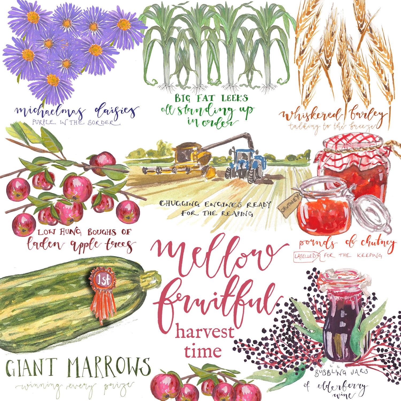 Harvest .jpg
