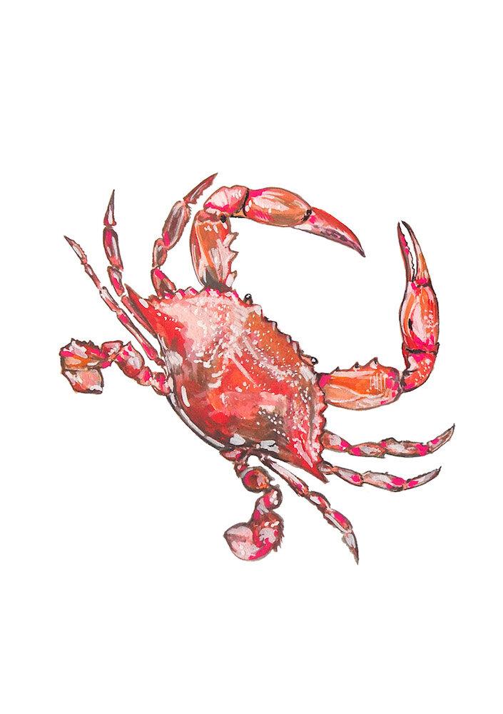 Crab 1000.jpeg