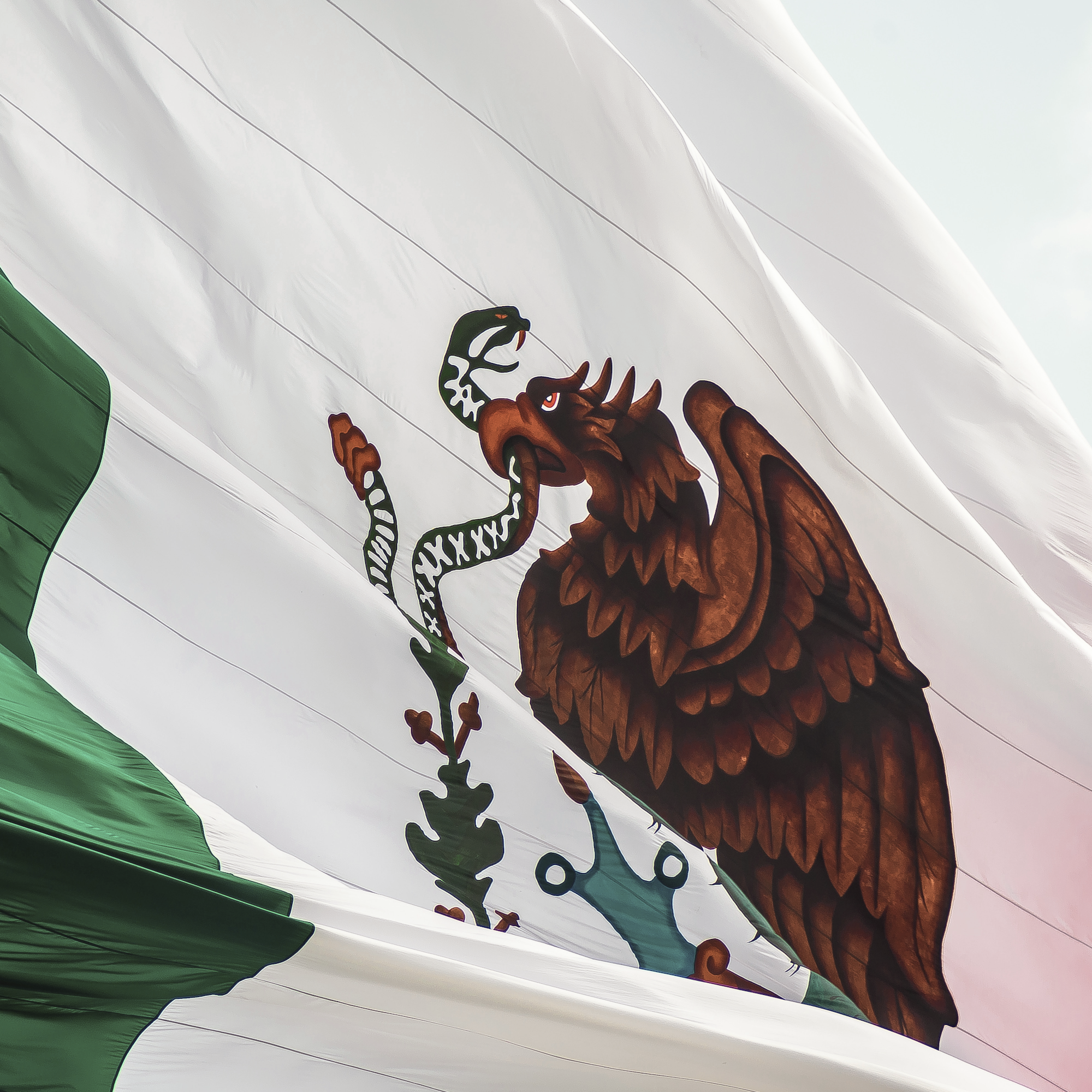 Mexico flagg (3).png