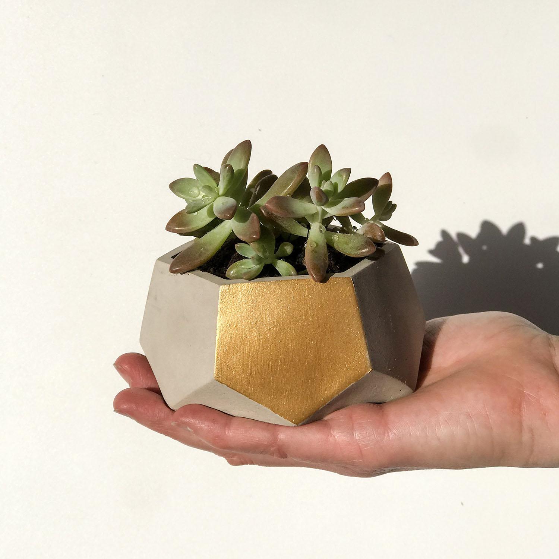 Gold detailing on handmade geometric concrete cast plant pot by Botanica Verde