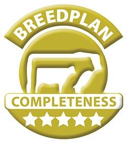 Breedplan-5Star-Gold.jpg
