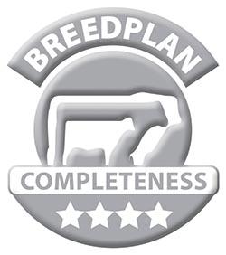 Breedplan-4Star-silver.jpg