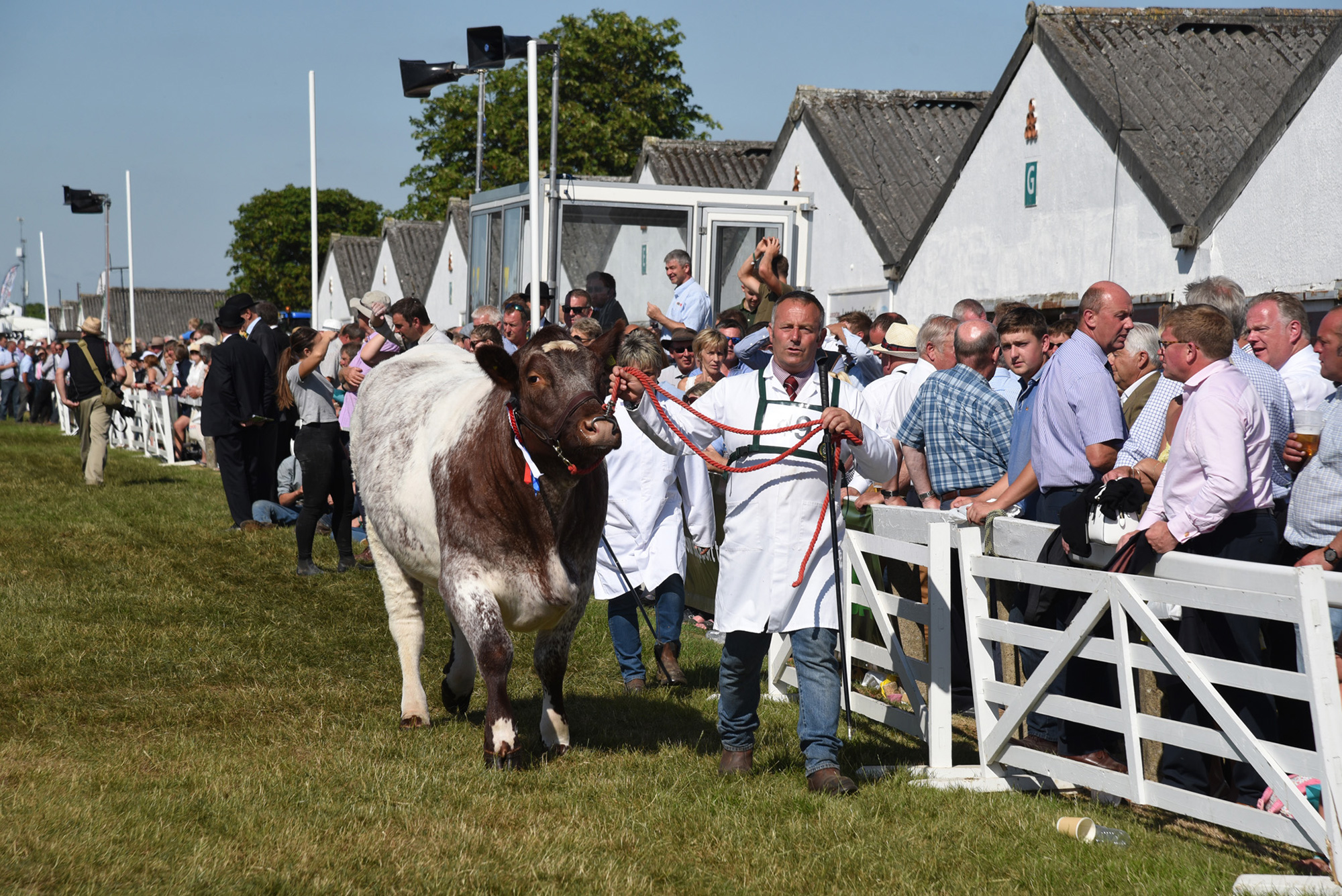 The Great Yorkshire Show 2018