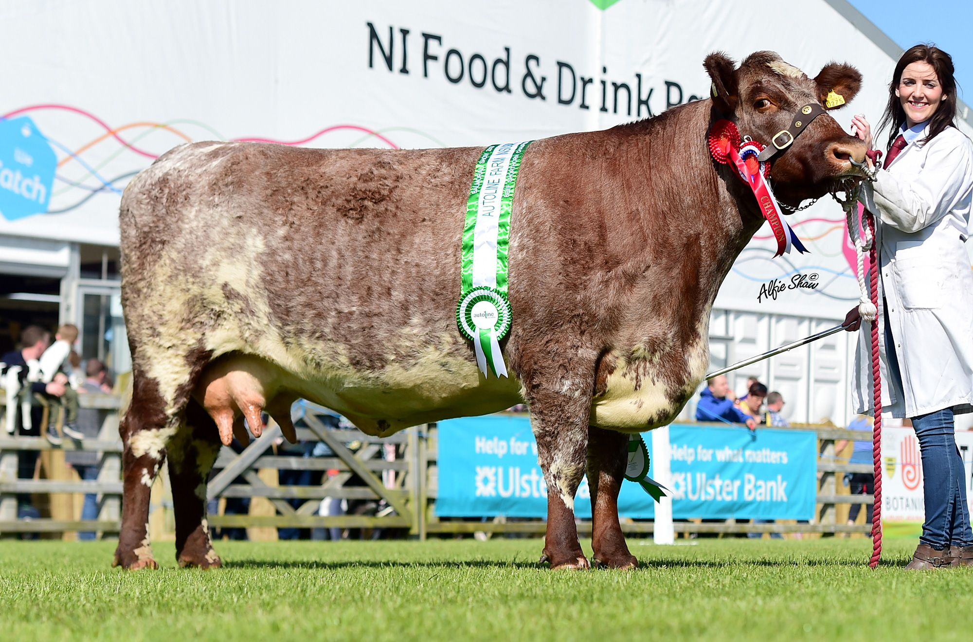 Royal Ulster Show 2018