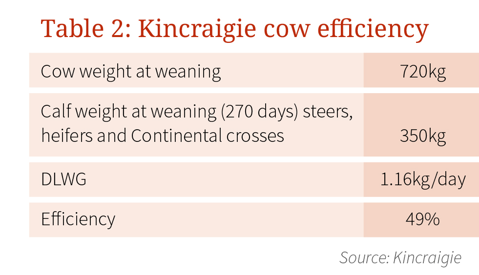 kincraigie-table-2.jpg