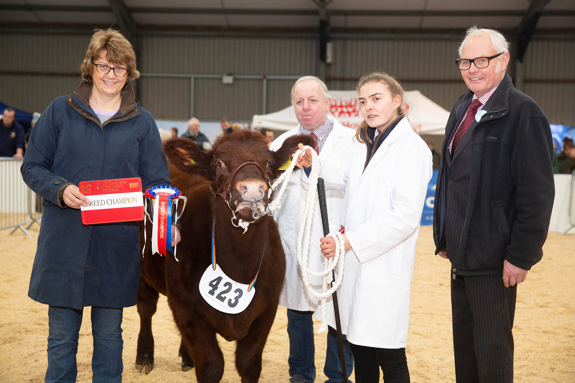 East of England Winter Stock Festival Calf Show 2018