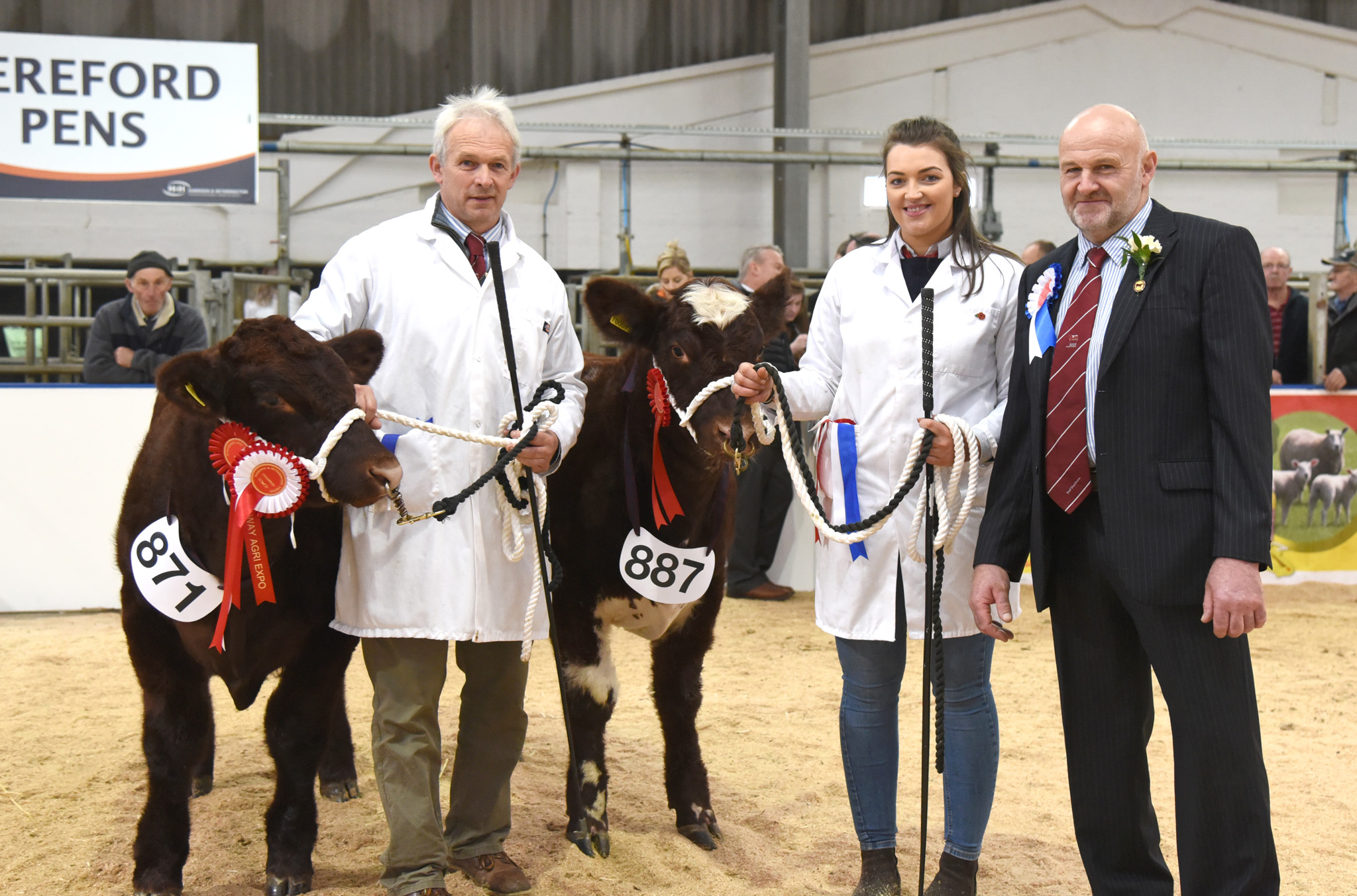 Overall and Reserve Champion Beautry Shuna Myrtle and Beautry Malfoy from S Currie.jpg