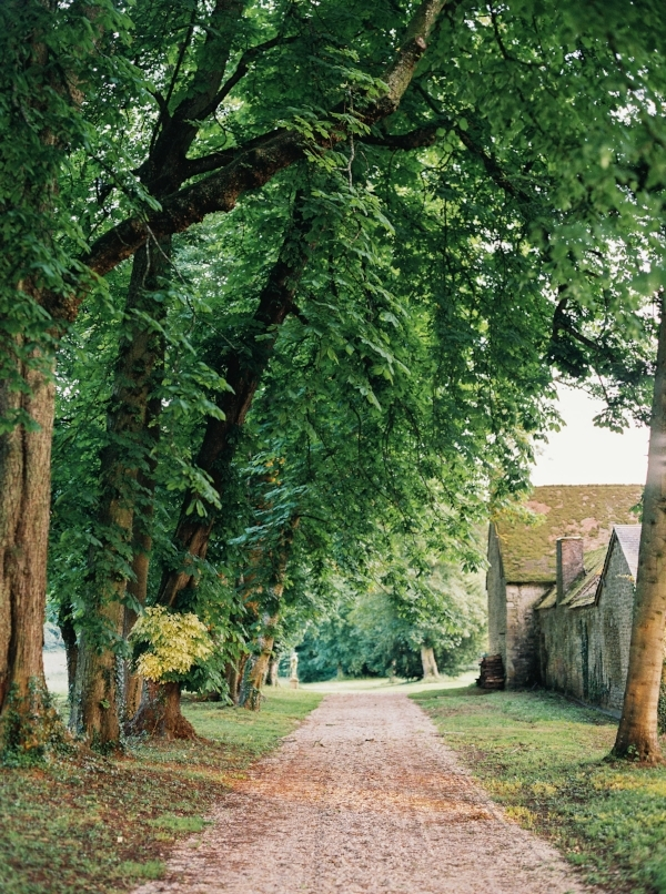 The allée lined with linden trees. Photo by Laura Gordon.