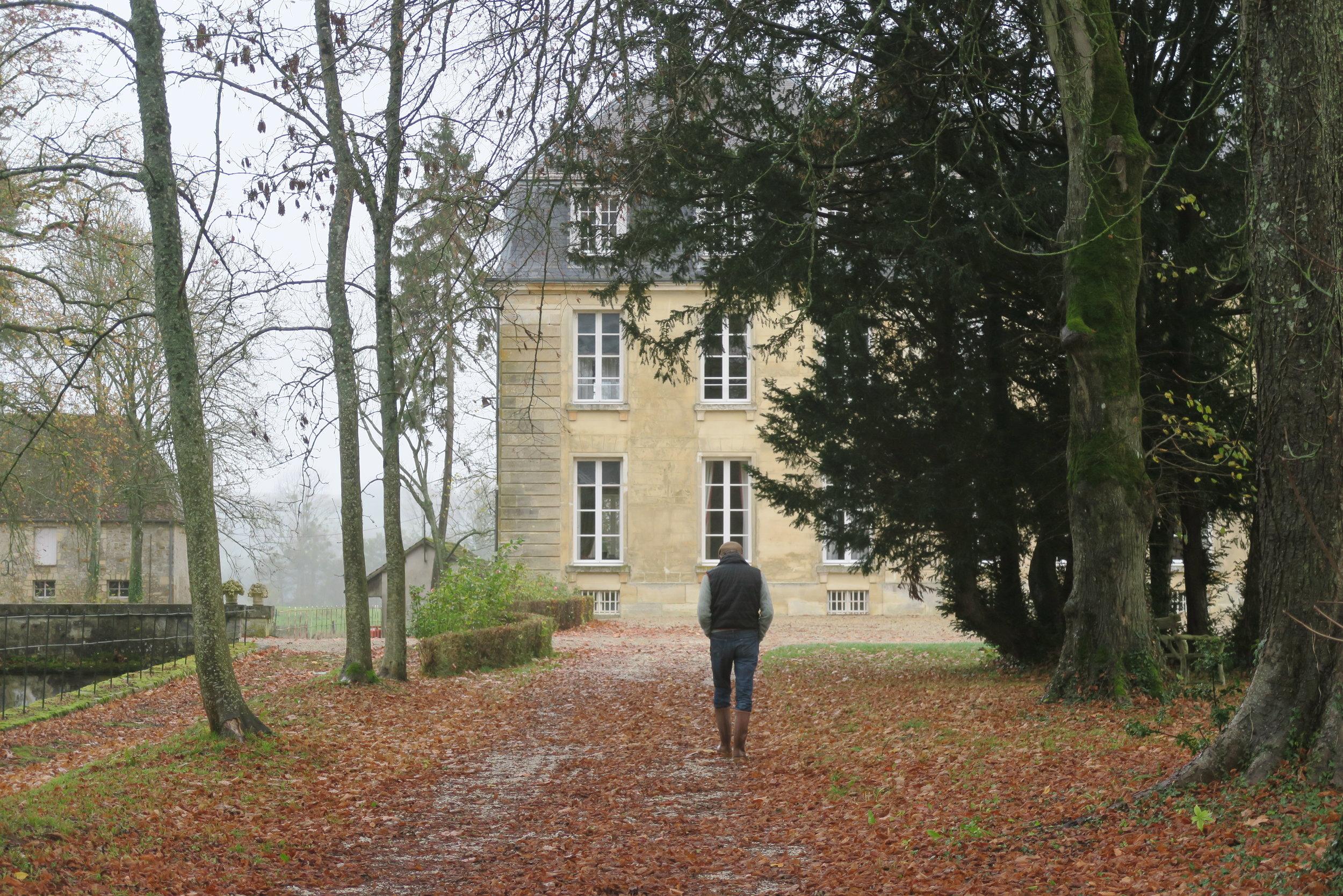 The allée leading to the Chateau.