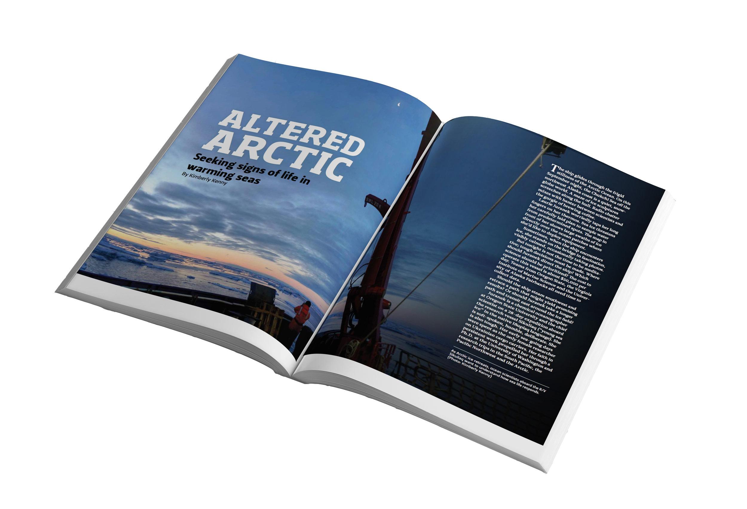 Altered Arctic 1.jpg