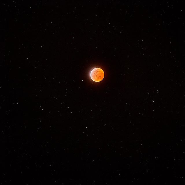 Super Blood Wolf Moon Eclipse and full moon for comparison. Swipe for details.  Eclipse was shot at: ISO 400, F5.6-8 (it's a manual lens I can't remember where I was) and a shutter speed of 2 seconds.  Full moon was shot at: ISO 100, F11 and a shutter speed of .5 seconds.  1.) Edited final 2.) Original out of camera 3.) Cropped Detail 4.) Full moon this AM 5.) Cropped detail  #elunarclipse #astrophotography #bloodmoon #fullmoon #sonya7riii #vintagelens #photography
