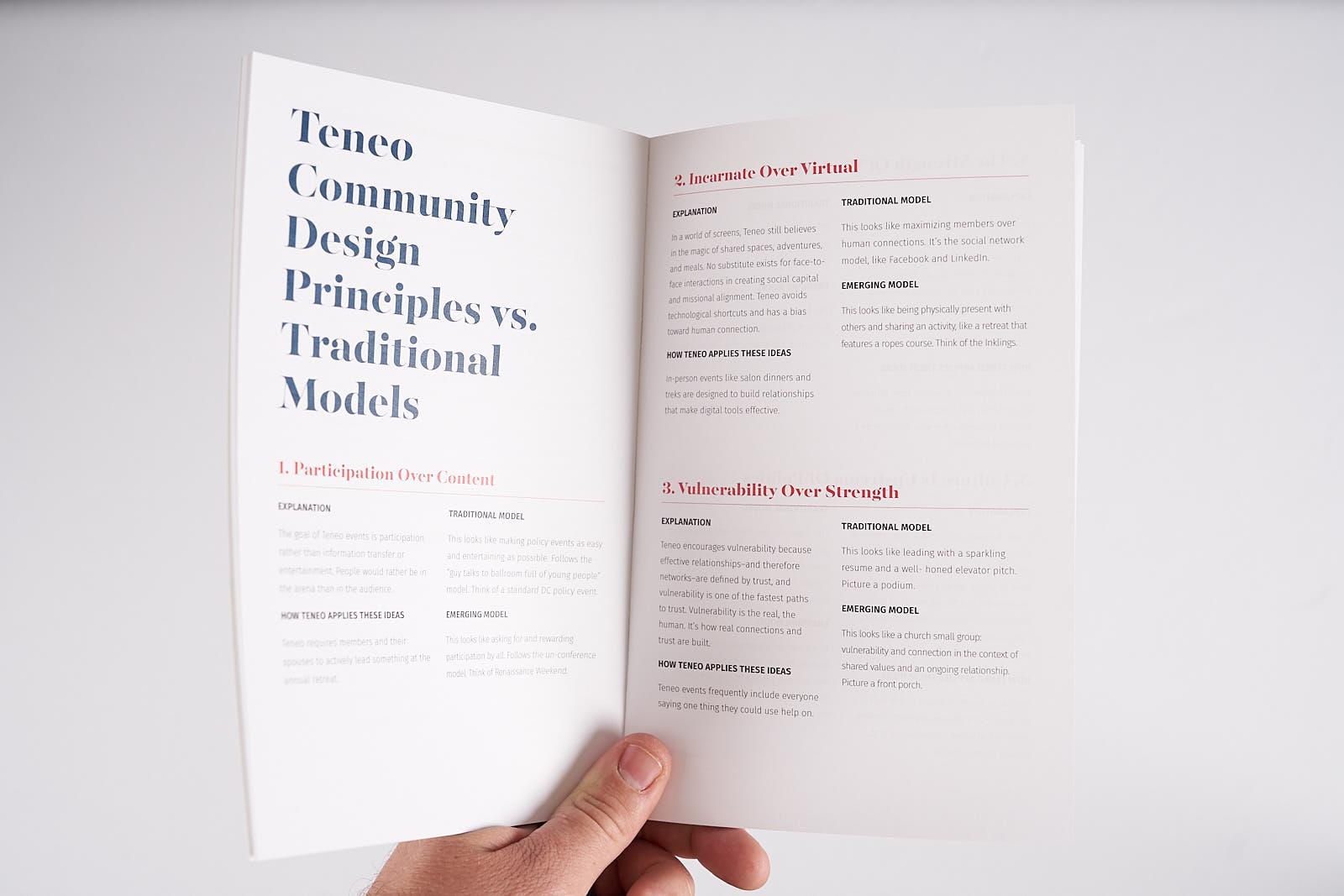 Teneo Community Vision