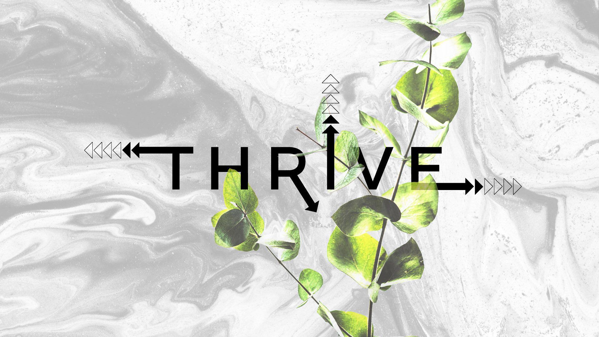 Thrive - Deepening our lives in authentic Community
