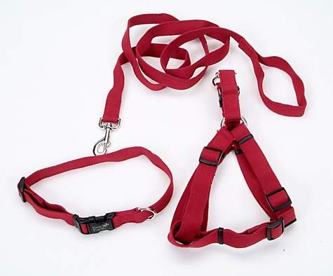 sop-collar-leash-harness.jpg