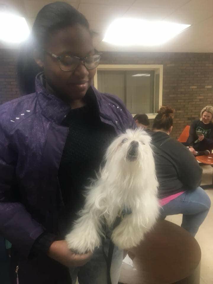 save-ohio-pets-2018-April-17.jpg