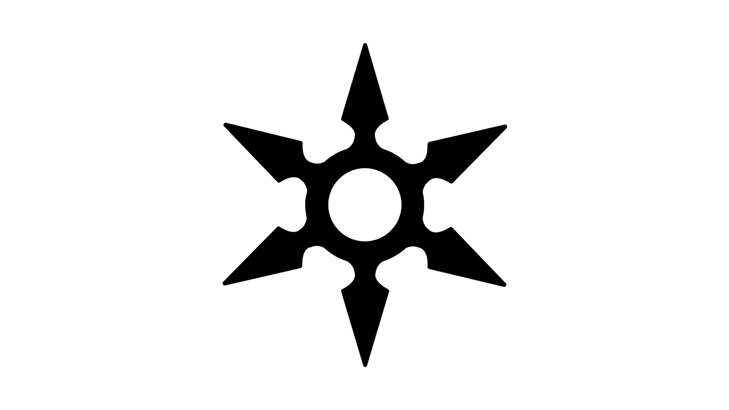Ninja Star Logo (Wide).jpg