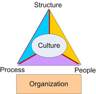 Organization Structure.png