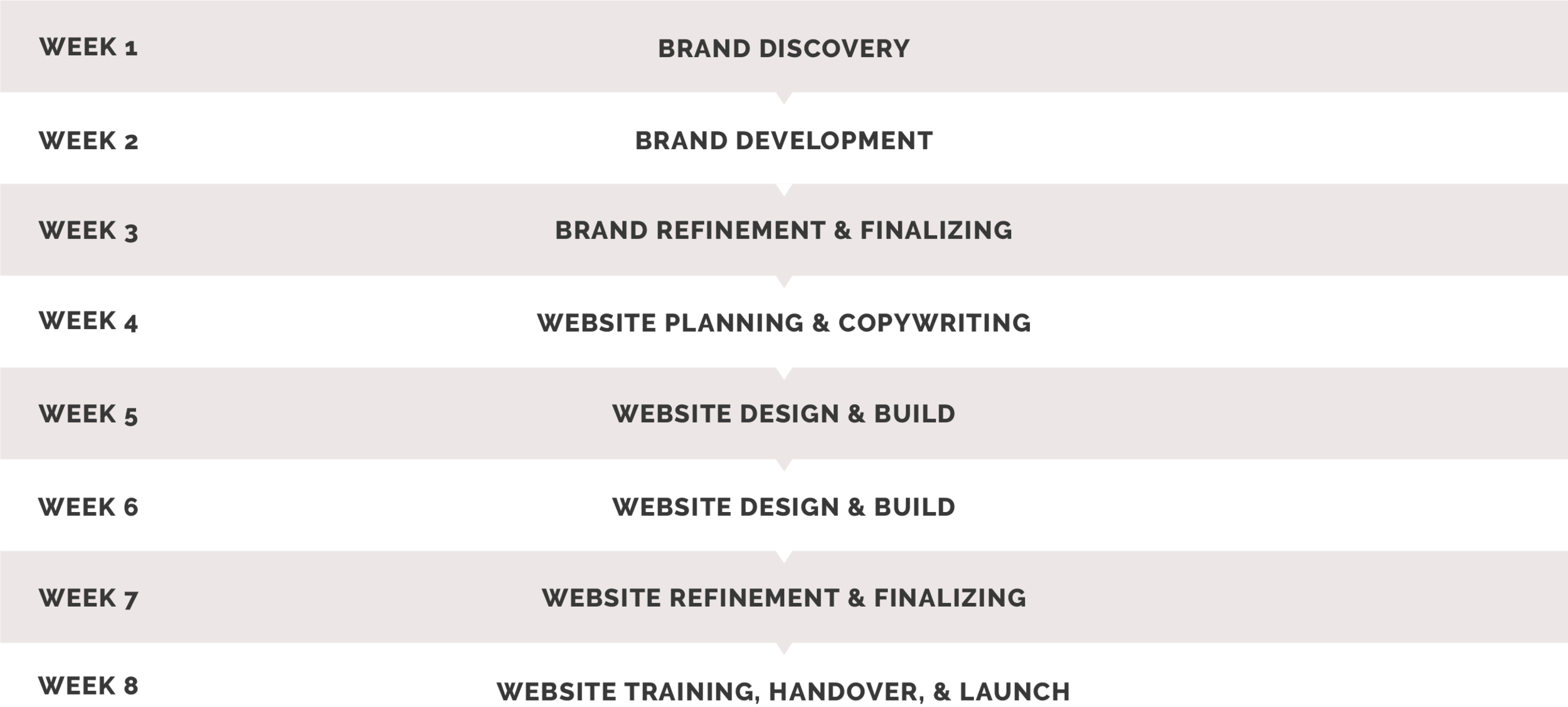 brandandwebdesigntimeline.png