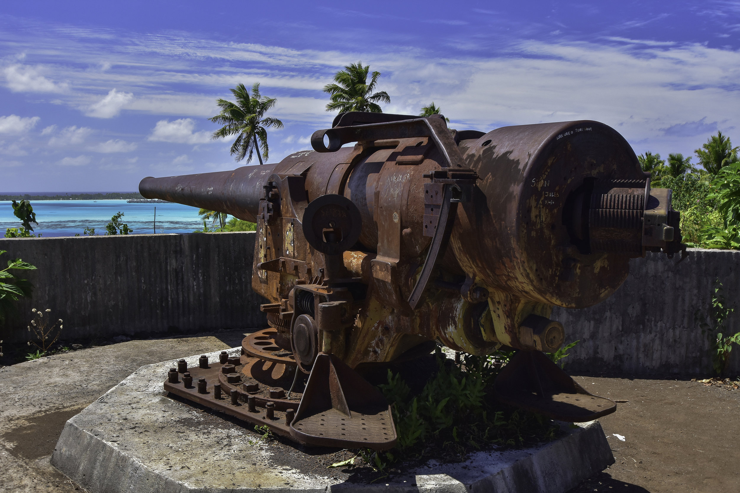 WWII Cannon / Jeremiah Cunningham