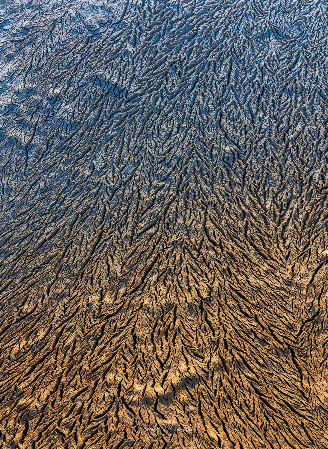 Fissures / Jennifer Renwick / Mud that froze overnight leaves fissures behind creating a mesmerizing pattern. The sun cast a warm glow on the mud before setting