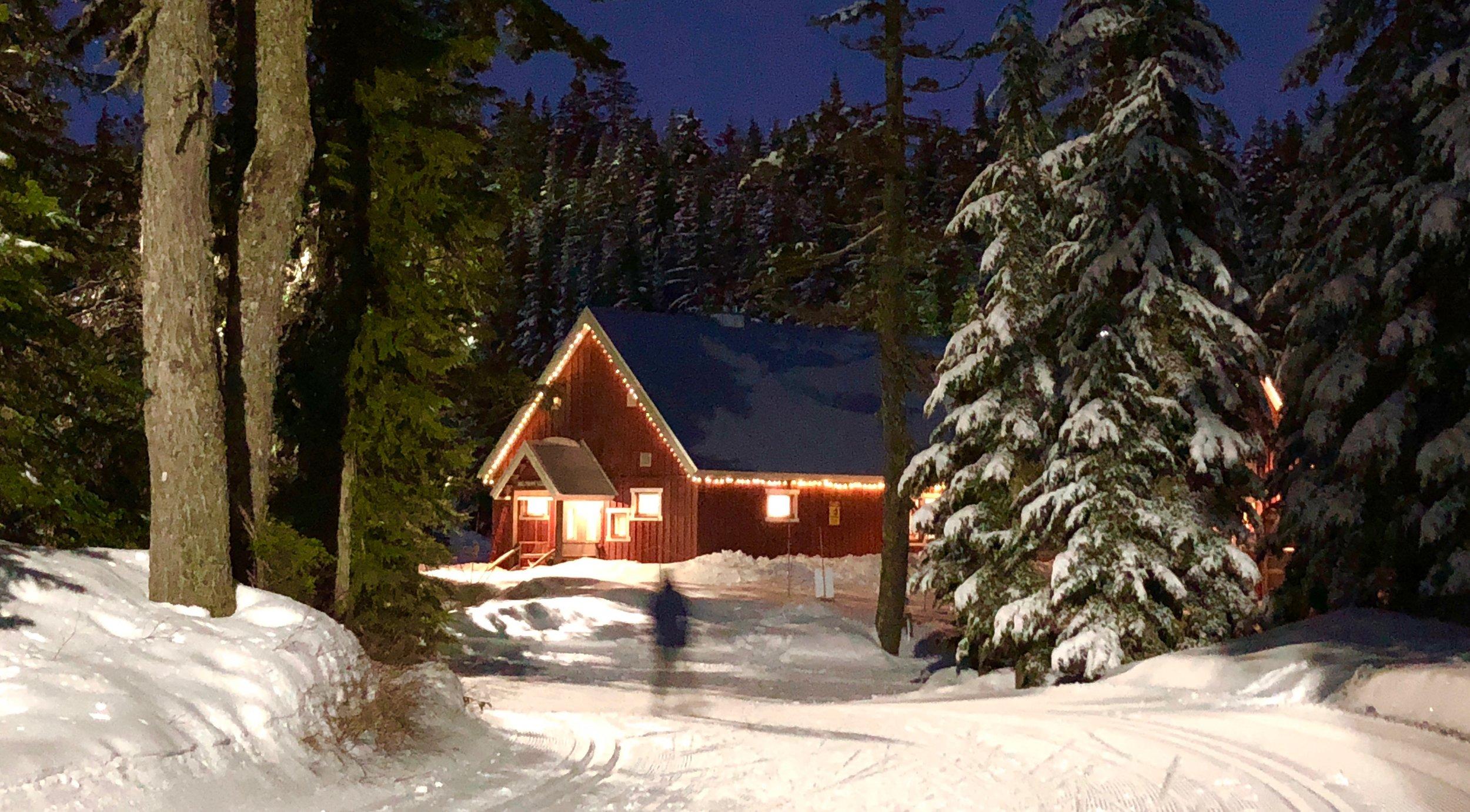 Snow - 2 of 29.jpg