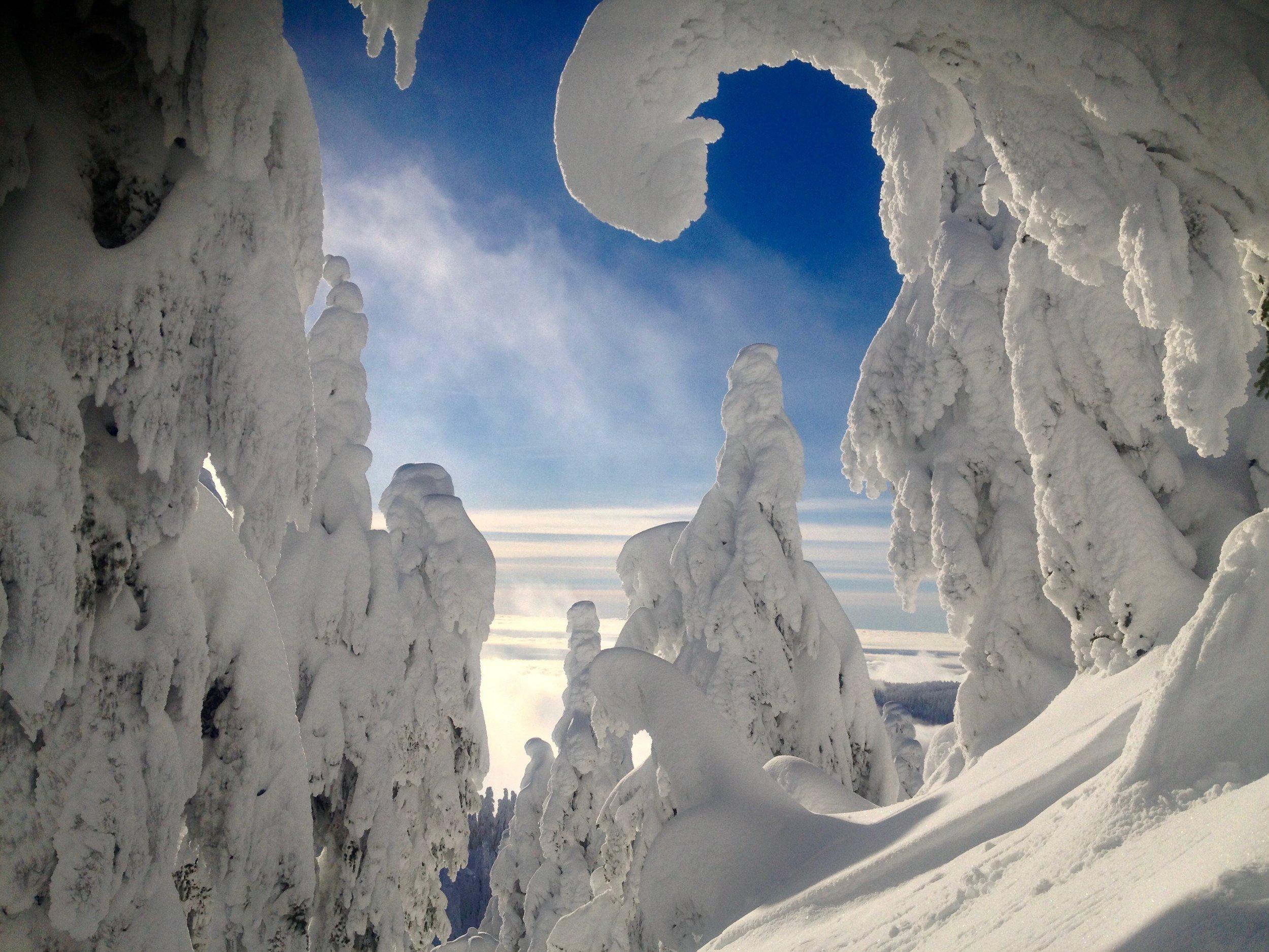 Snow - 15 of 29.jpg