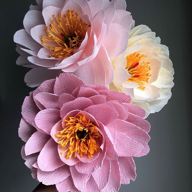 No filters needed here! We are pumped to have @reverypaperflora hosting a Crepe Paper Peony Workshop at Makeshift on September 14th! This one is for adults only and coincides with #artallnight #artallnightdc ! Get your tickets now / pre registration required at makeshiftdc.com