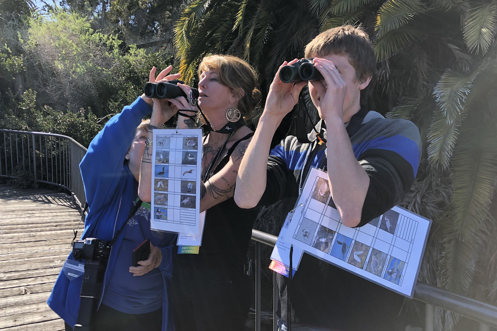 Focusing binoculars