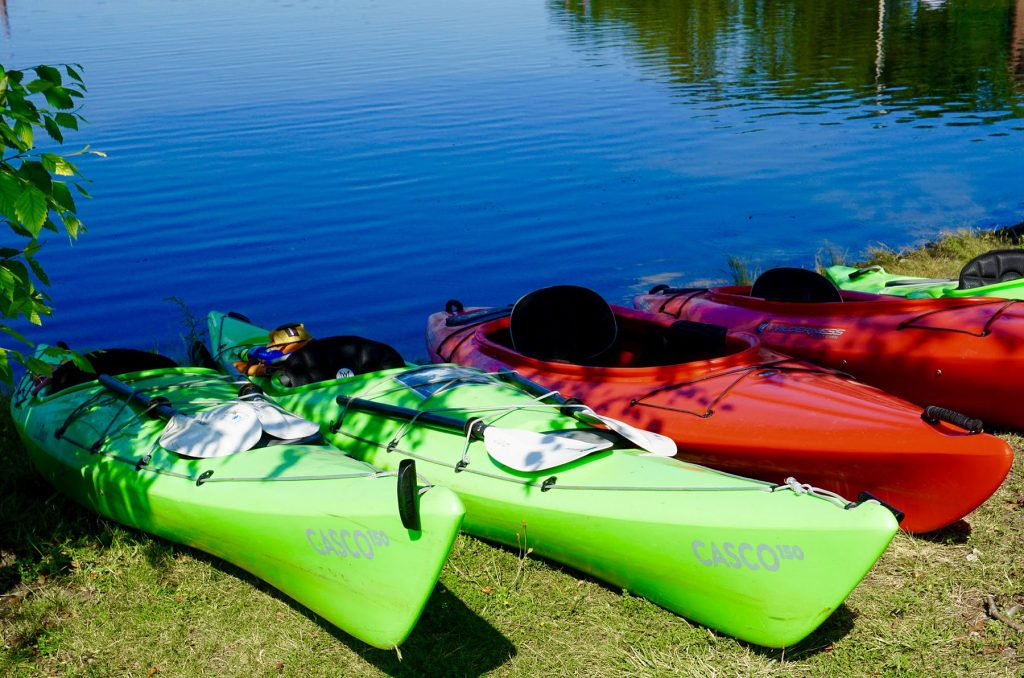 field-trip-kayaks-photo-credit-NEBoating.jpg