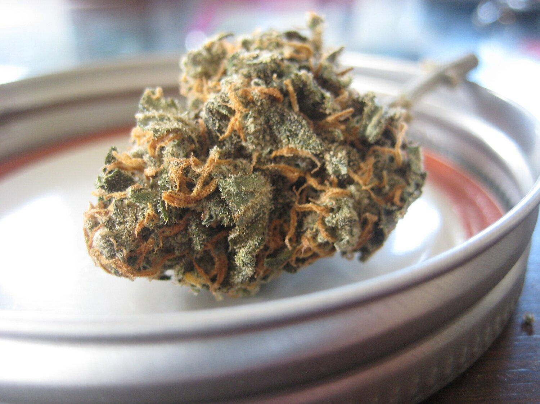 Flower Image - Cannabis - Coronavirus.jpg