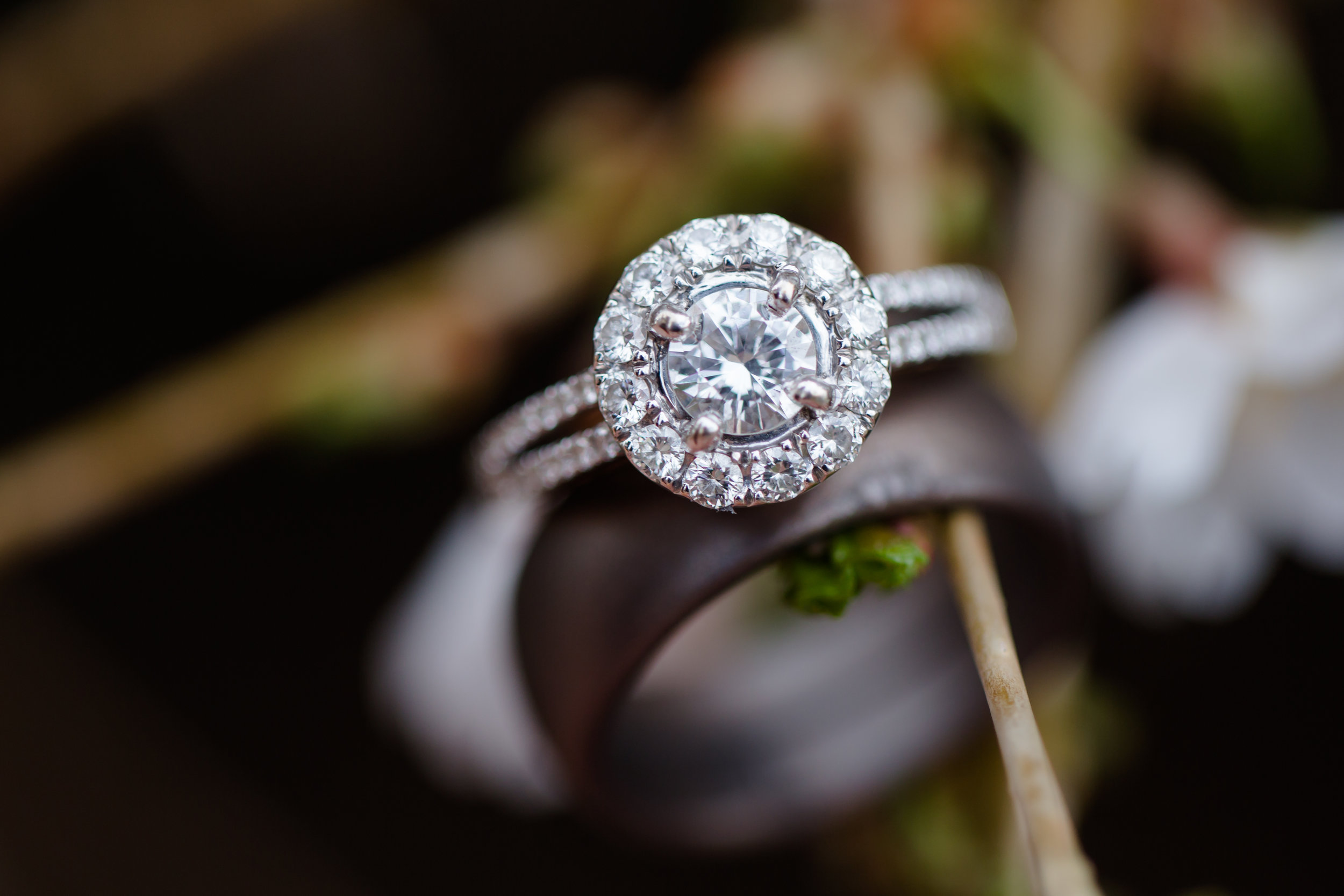 Engagement Rings 14KW Two tone halo on branch.jpg