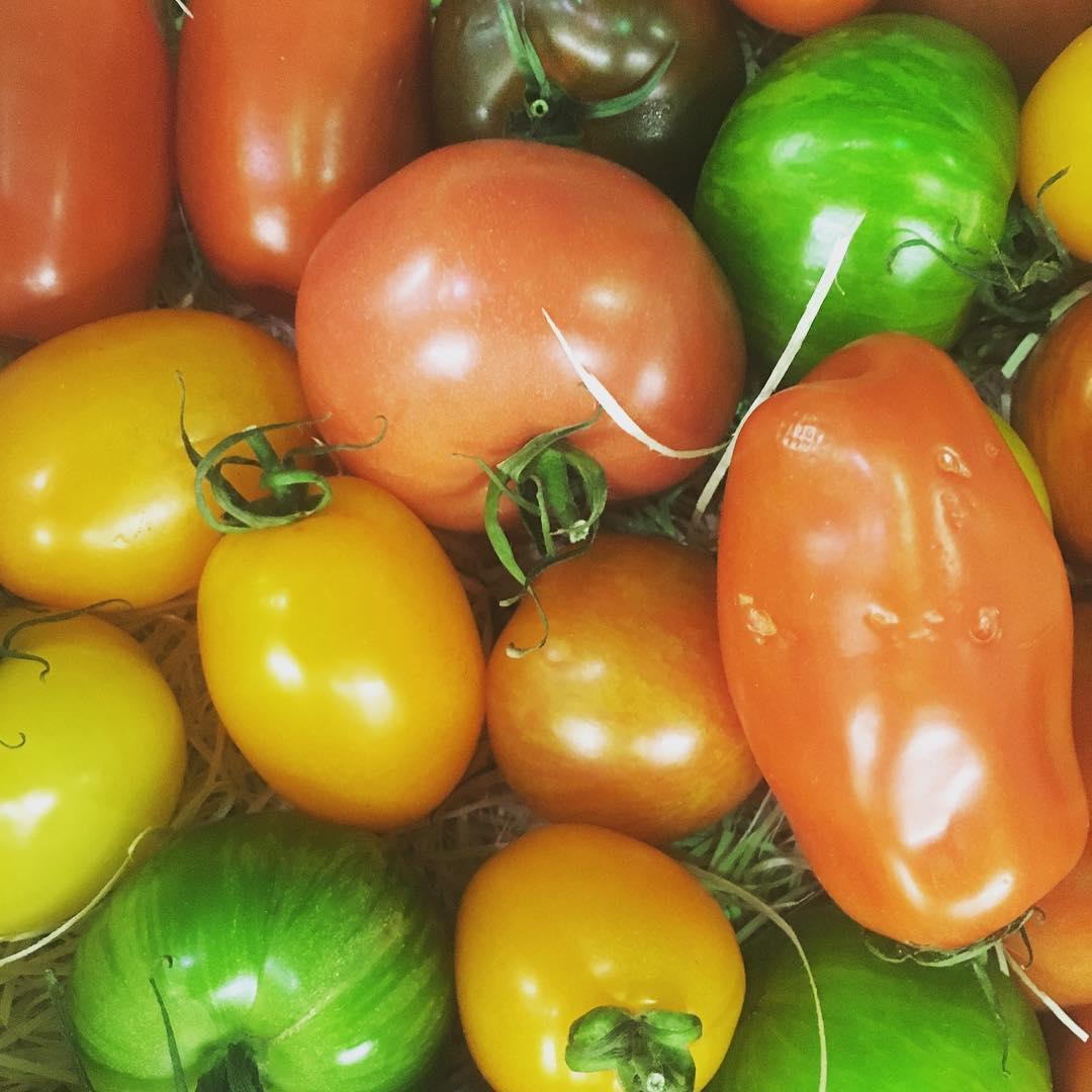 Taino at the market