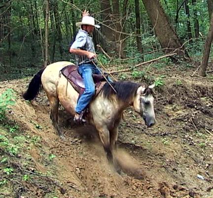 cowboy 001.jpg