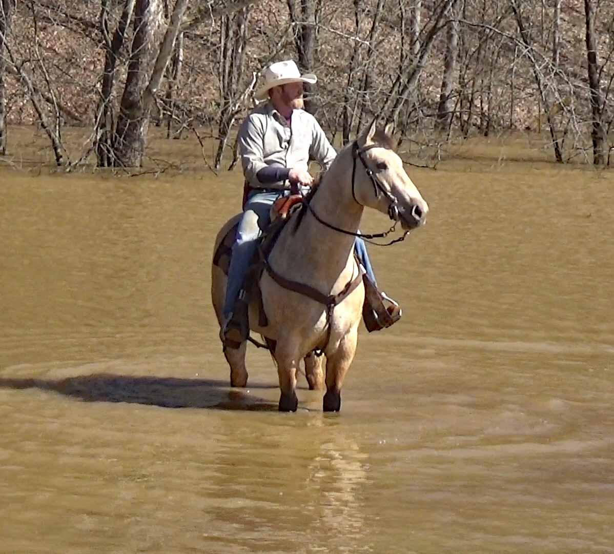 Tuck in the flood waters.Movie_SnapshotA.jpg