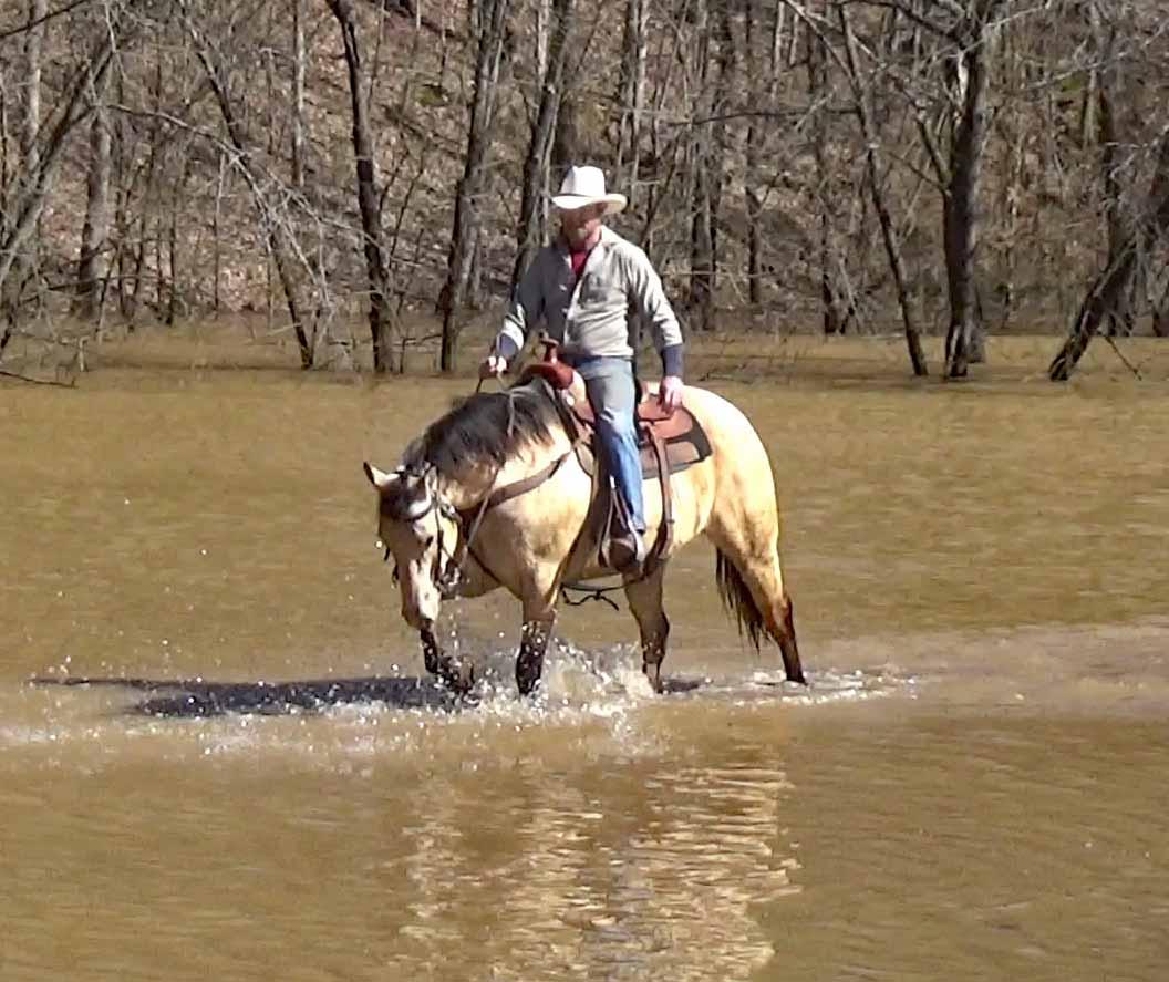 Tuck in the flood waters (11).Movie_SnapshotA.jpg