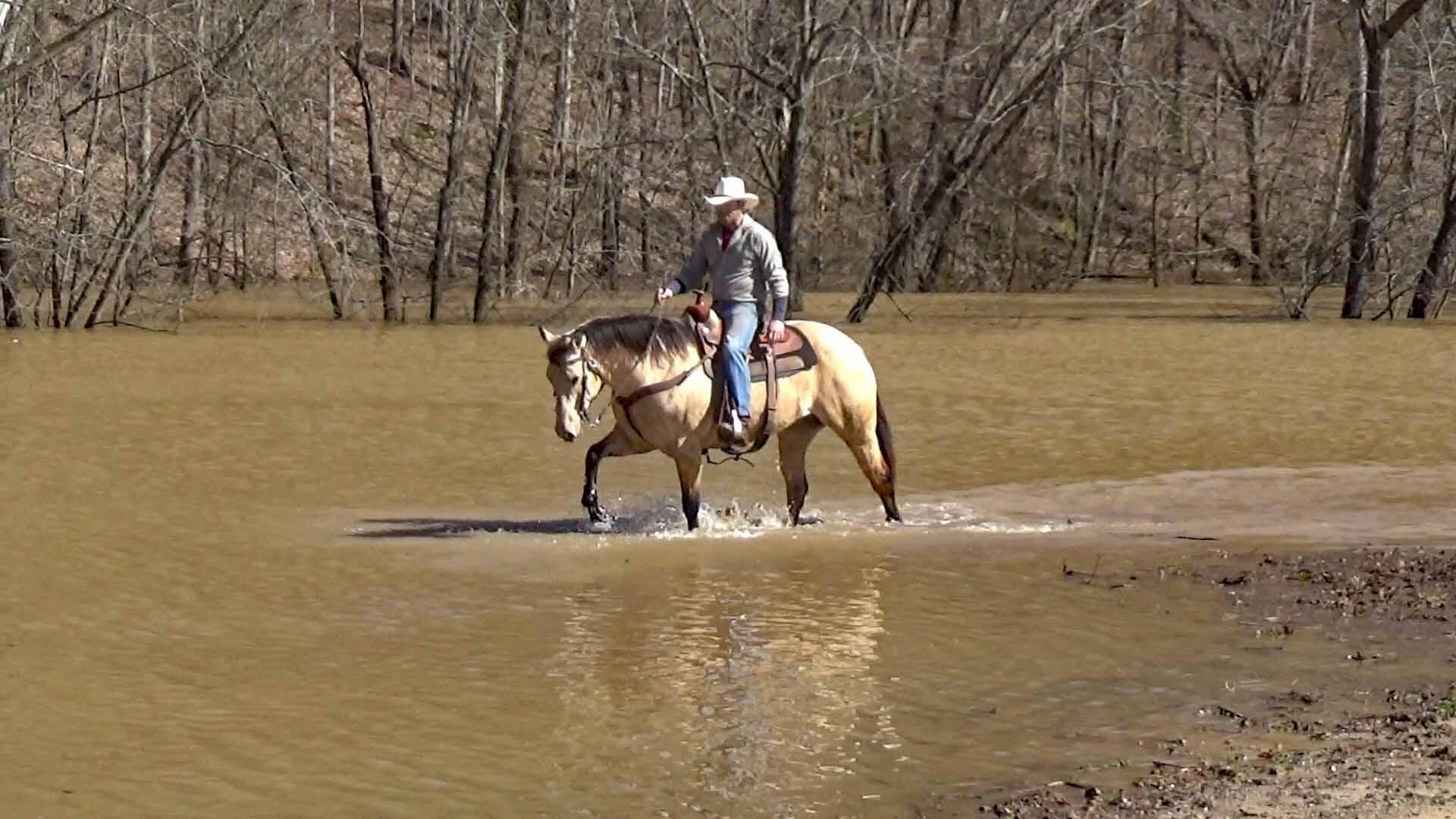 Tuck in the flood waters (9).Movie_SnapshotA.jpg