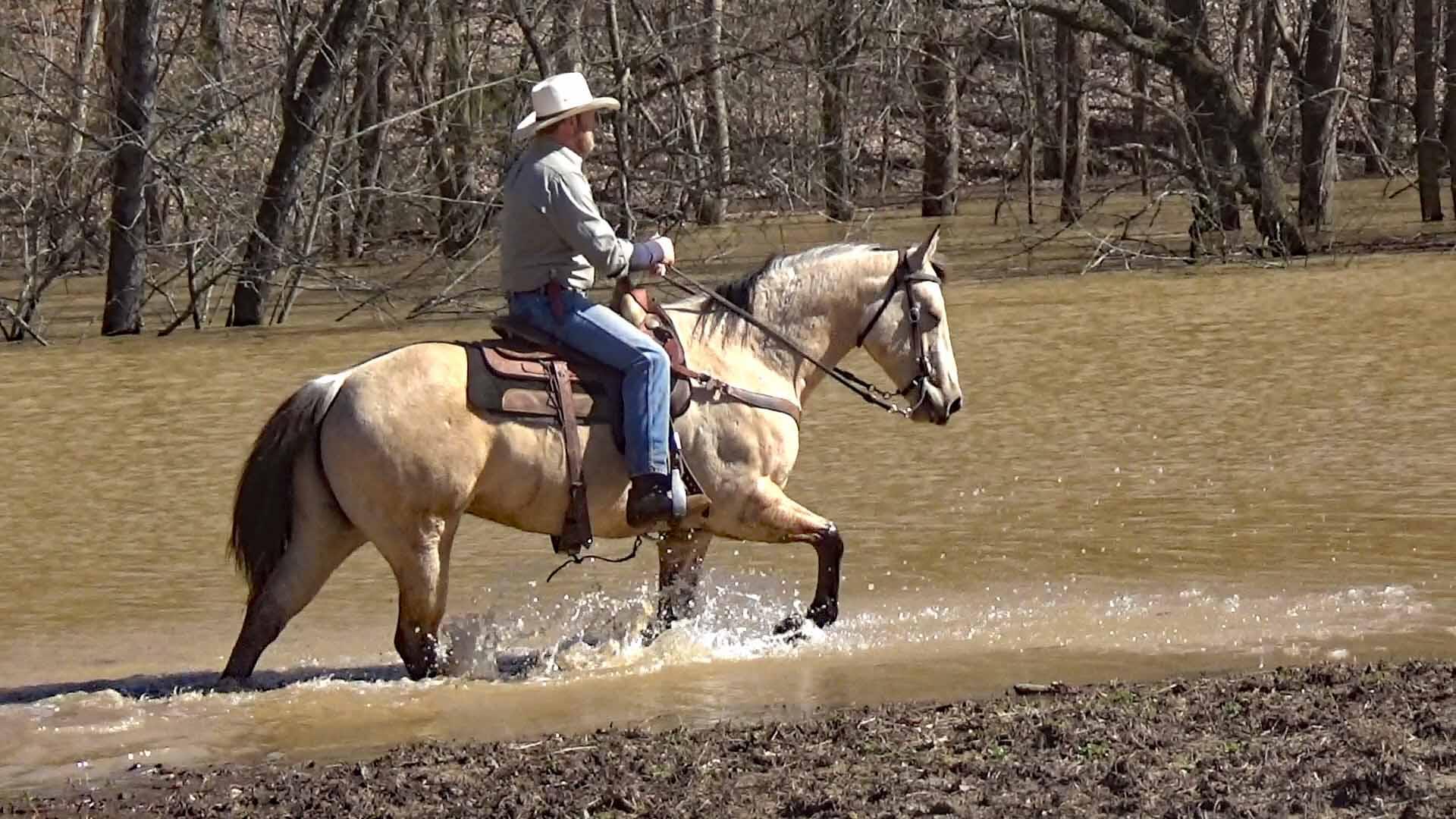 Tuck in the flood waters (5).Movie_SnapshotA.jpg