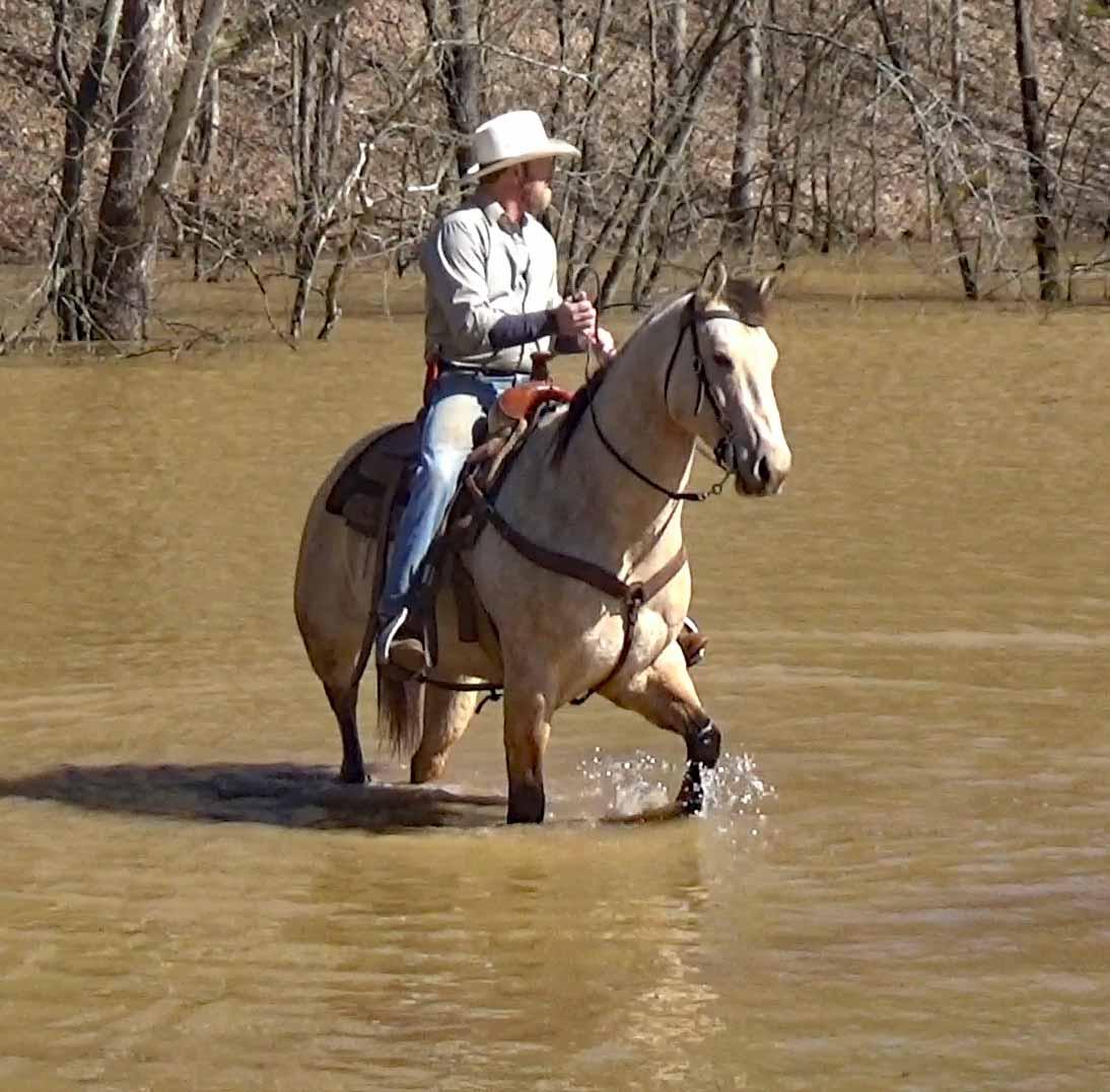 Tuck in the flood waters (3).Movie_SnapshotA.jpg