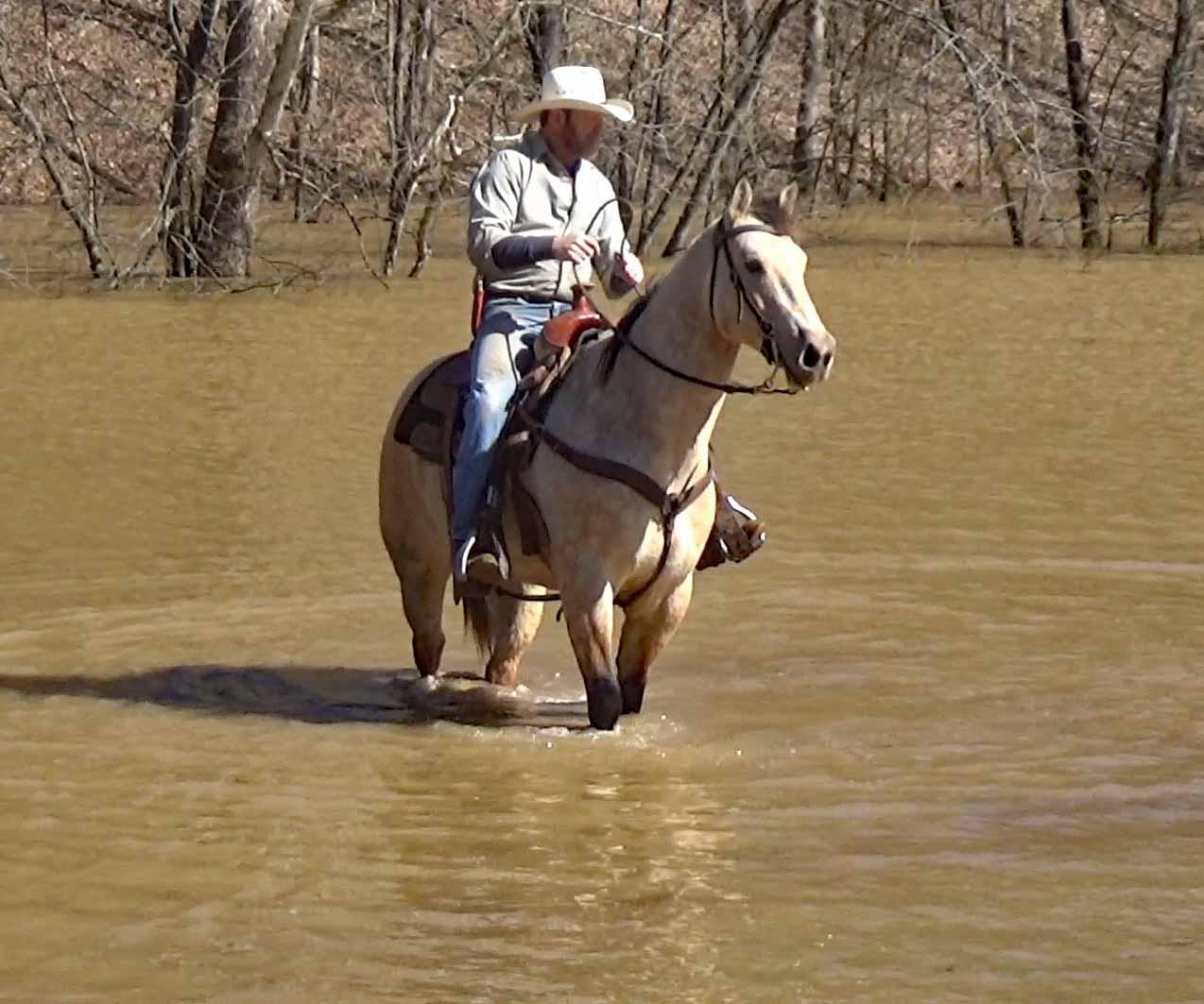 Tuck in the flood waters (2).Movie_SnapshotA.jpg