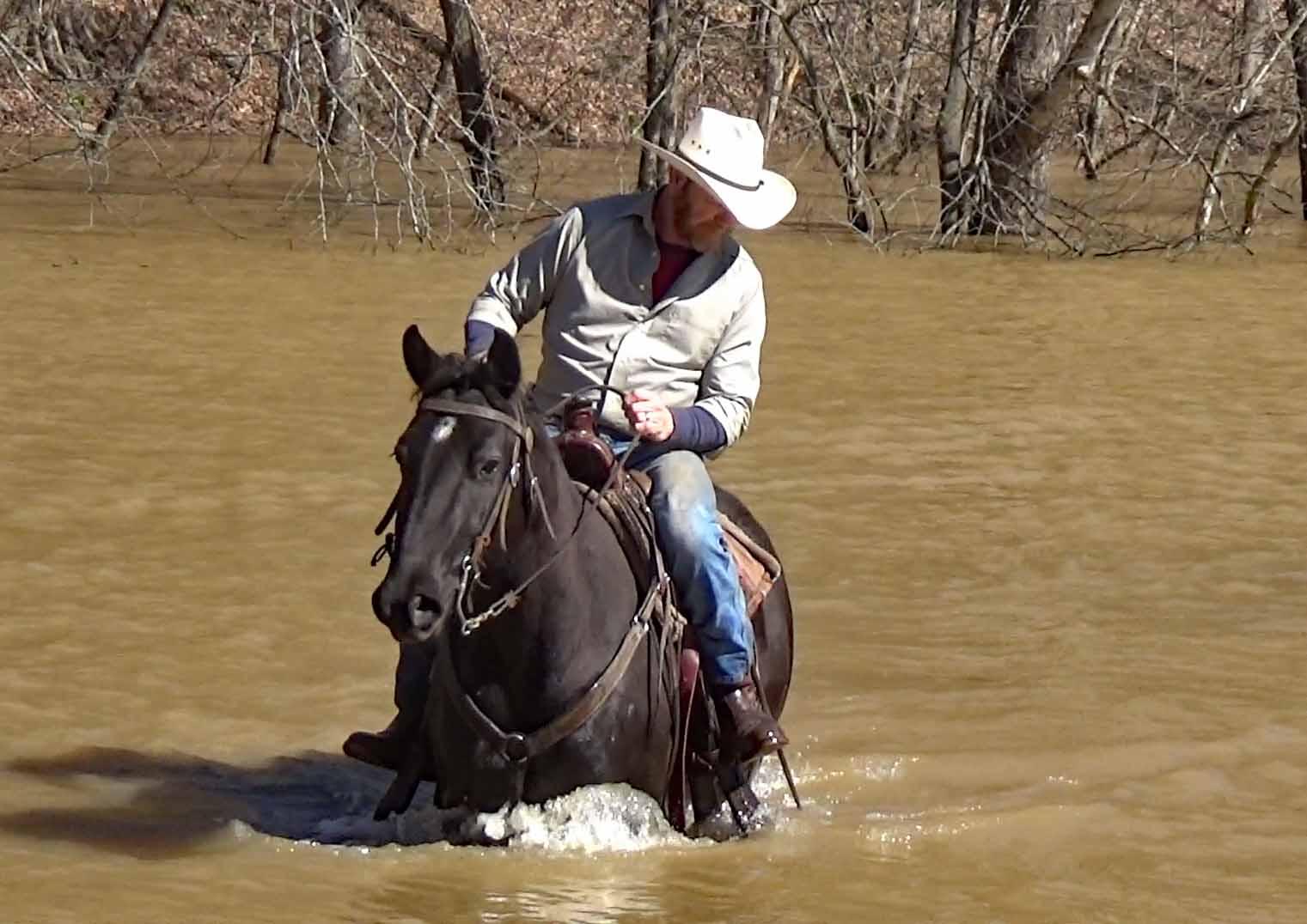 Mo in the flood waters.Movie_SnapshotA.jpg