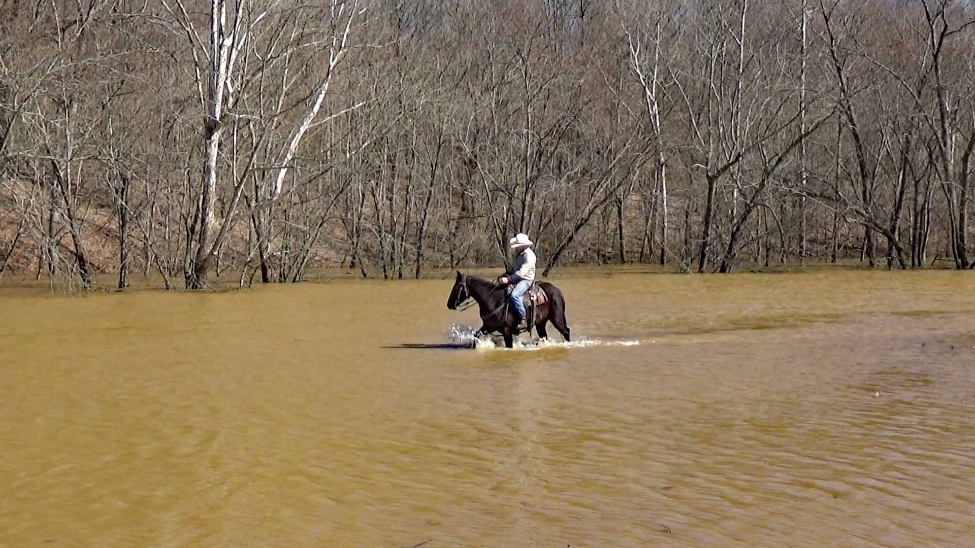 Mo in the flood waters (5).Movie_SnapshotA.jpg