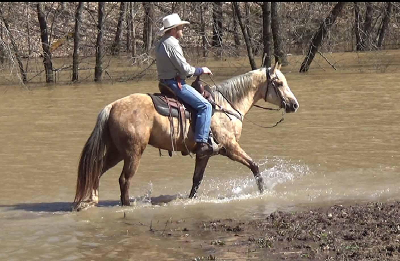 Clay in the flood waters..Movie_SnapshotA.jpg