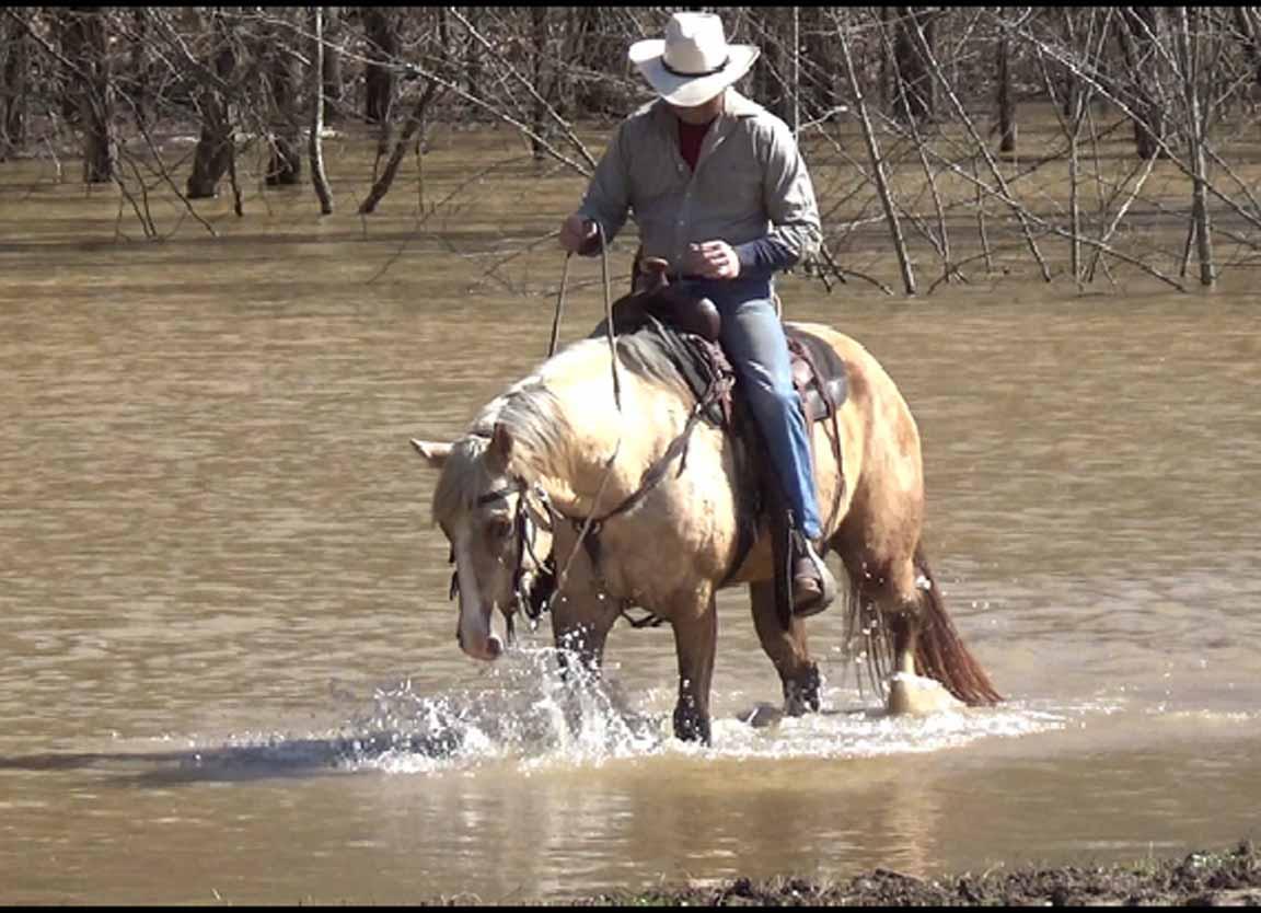 Clay in the flood waters. (10).Movie_SnapshotA.jpg