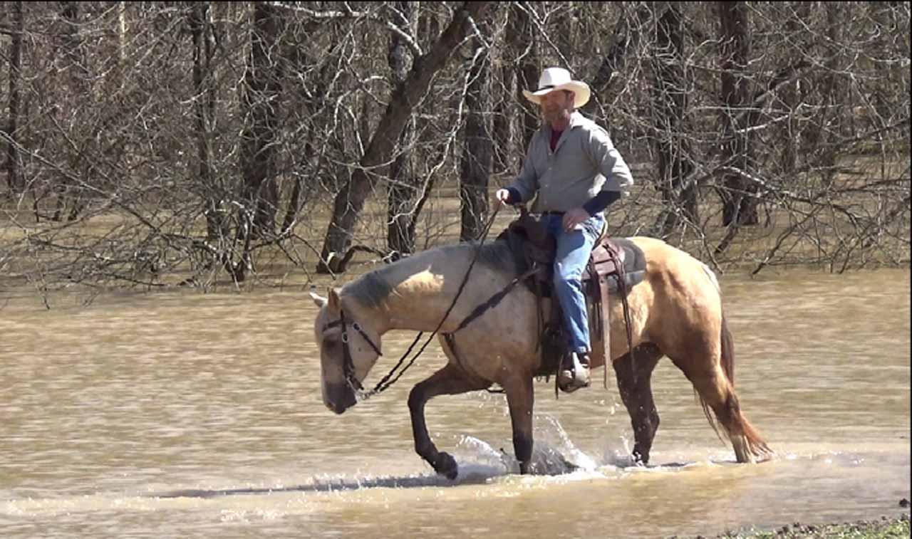 Clay in the flood waters. (7).Movie_SnapshotA.jpg