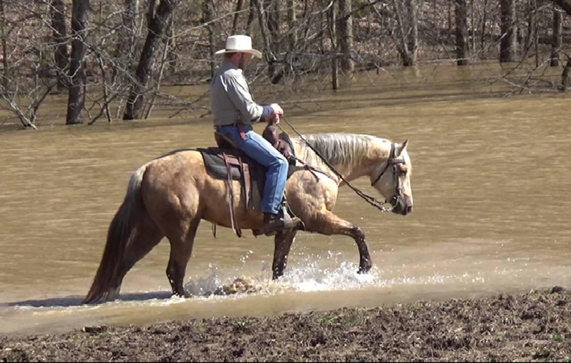 Clay in the flood waters. (5).Movie_SnapshotA.jpg