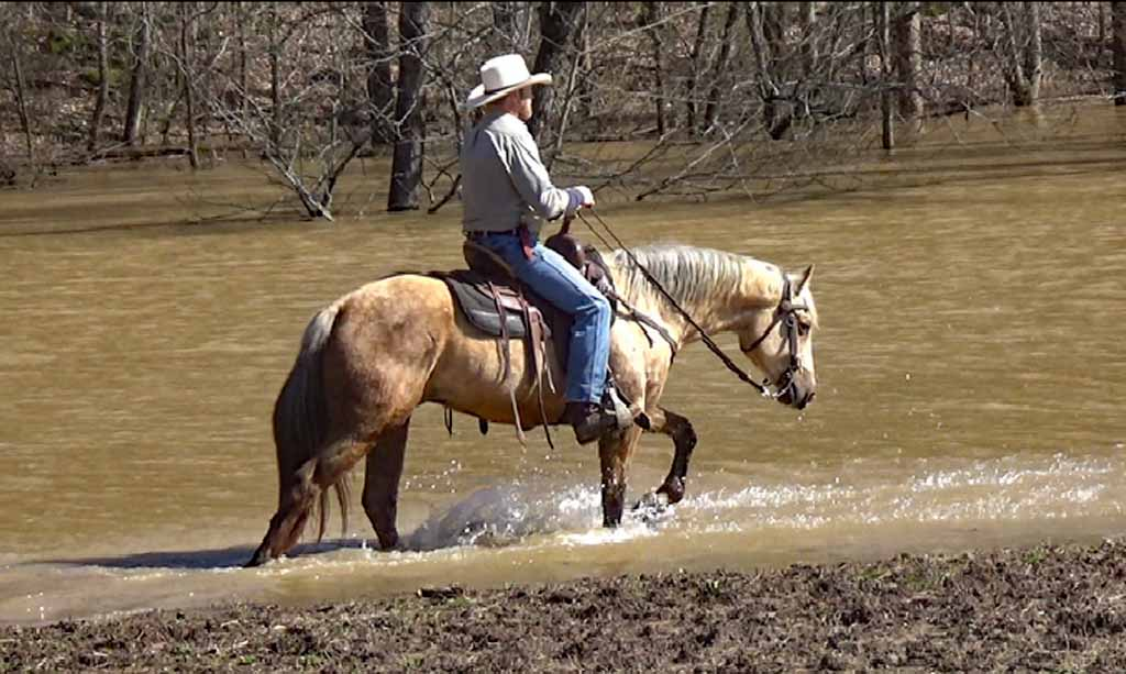 Clay in the flood waters. (4).Movie_SnapshotA.jpg