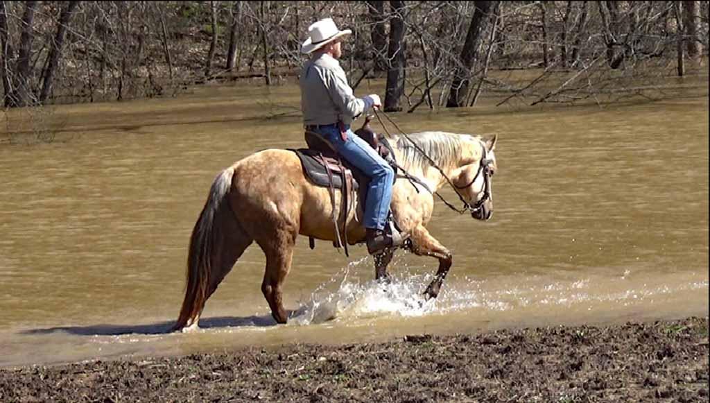 Clay in the flood waters. (3).Movie_SnapshotA.jpg