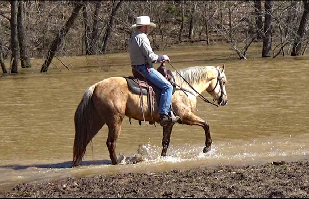Clay in the flood waters. (2).Movie_SnapshotA.jpg